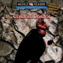 Condors =
