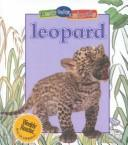 Leopard by
