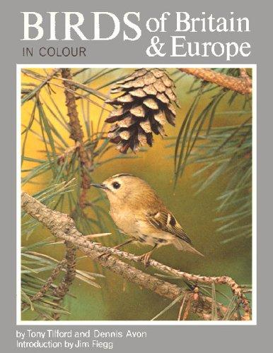 Birds of Britain & Europe by Dennis Avon